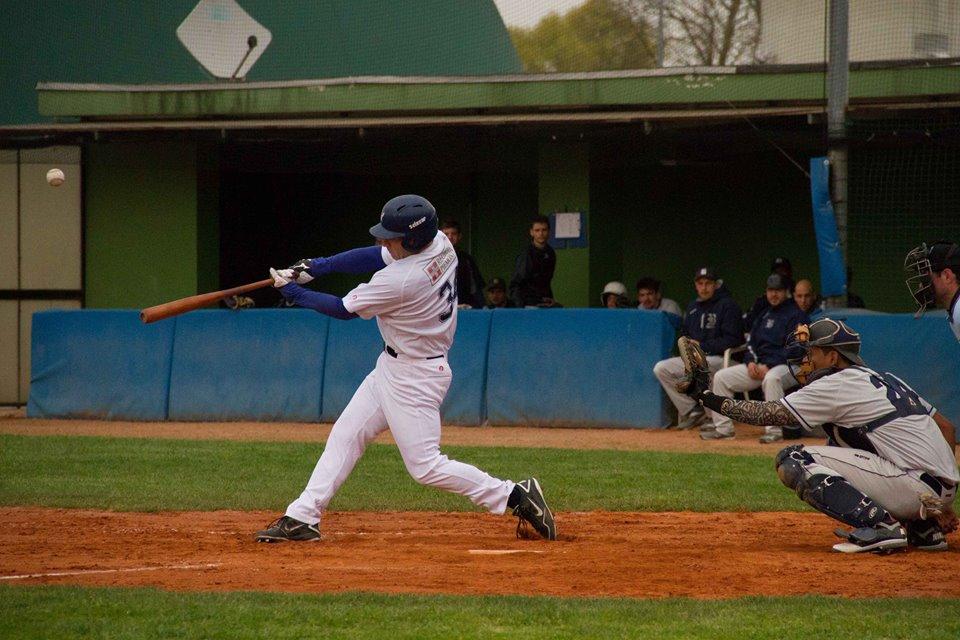 baseball novara