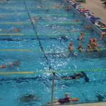 libertas nuoto Novara