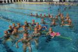 libertas nuoto